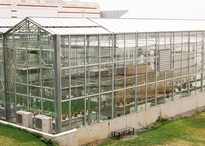 Greenhouse Laboratoy